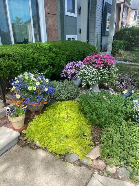 Homeowners Gardening